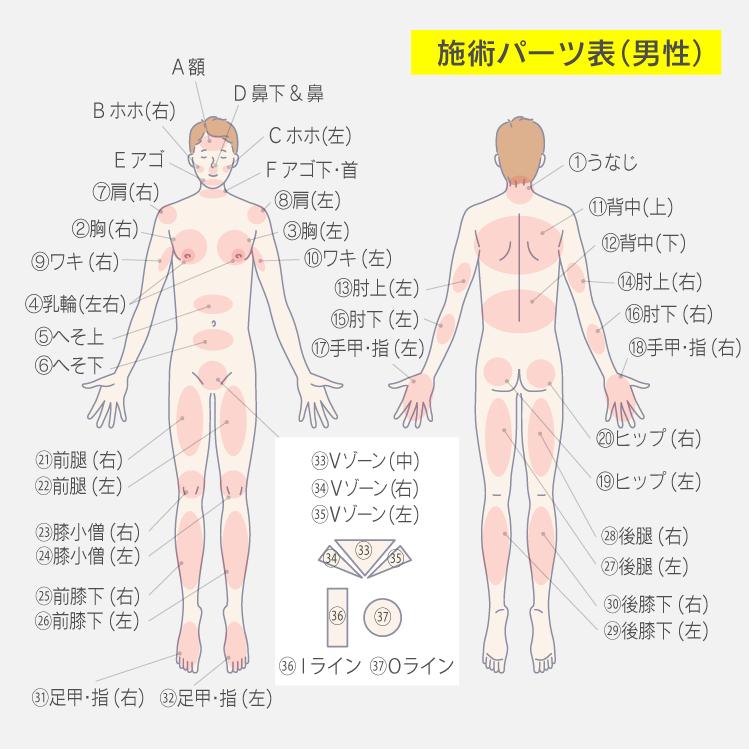 施術パーツ表(男性)